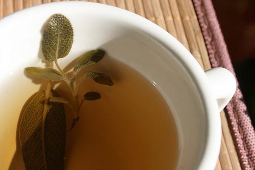 Sage Tea (Faskomilo)