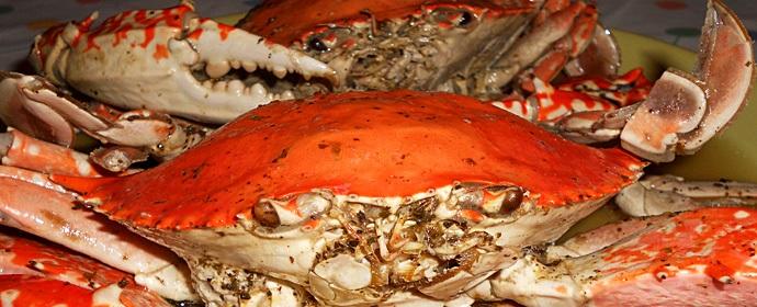 Boiled Crab With Lemon Dressing