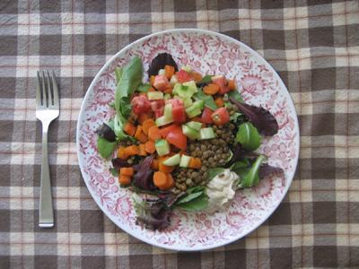 Lentil Salad - Fakes Salata