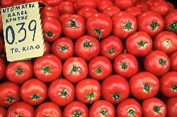 Greek ripe tomatoes