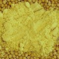 Mustard Powder - Moustarda skoni