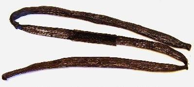 Vanilla - Vanilia